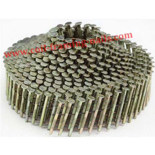 coil nails electro galvanzied chisel point