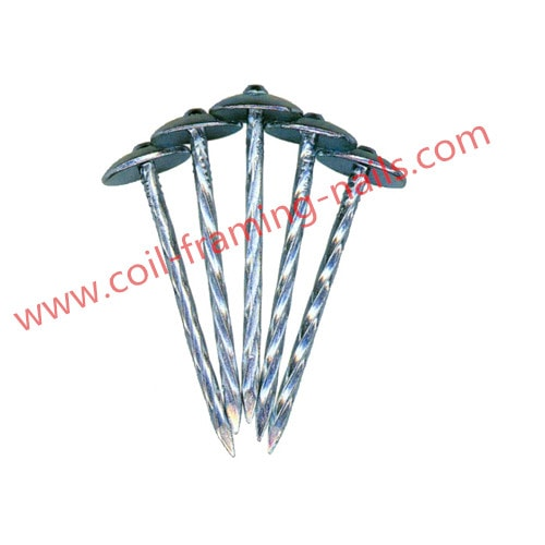 Roofing nails galvanized finish  sc 1 st  Coil nails framing nails roofing nails nailer guns & Roofing Nails with Umbrella Head | NC nails u0026 nailers memphite.com