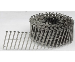 """<h3> Coil nails ring shank</h3>  304 stainless steel coil nails  <a href=""""http://www.coil-framing-nails.com/coil-nails-ring-shank/"""">stainless-steel-wire-collated-nails</a>"""